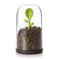 绿芽勺子密封茶叶罐