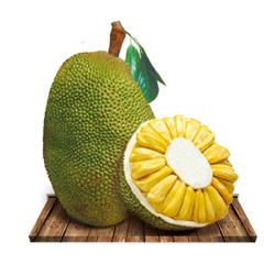 【京东伙伴计划—仅限积分兑换】海南三亚菠萝蜜 黄肉非红肉1个 20-25斤