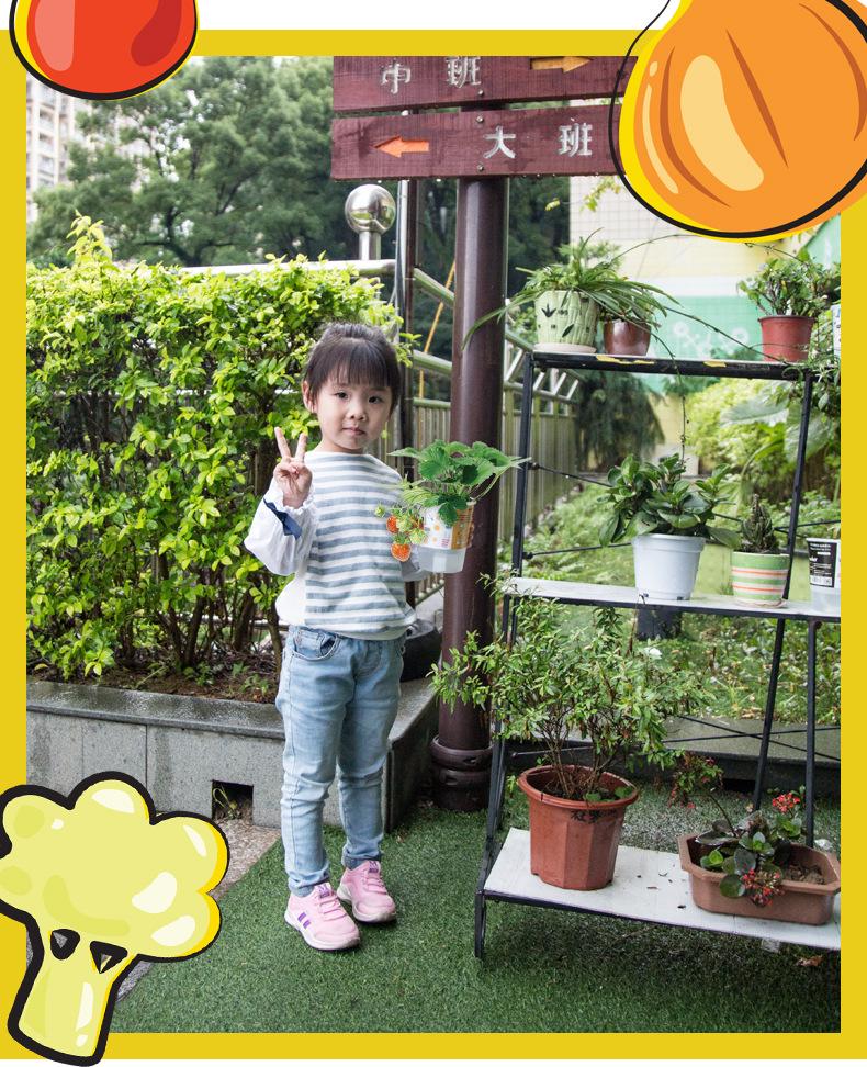 樂樂蔬菜詳情790-2_03.jpg