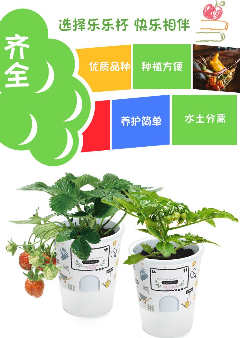 樂樂蔬菜詳情790-2_06.jpg