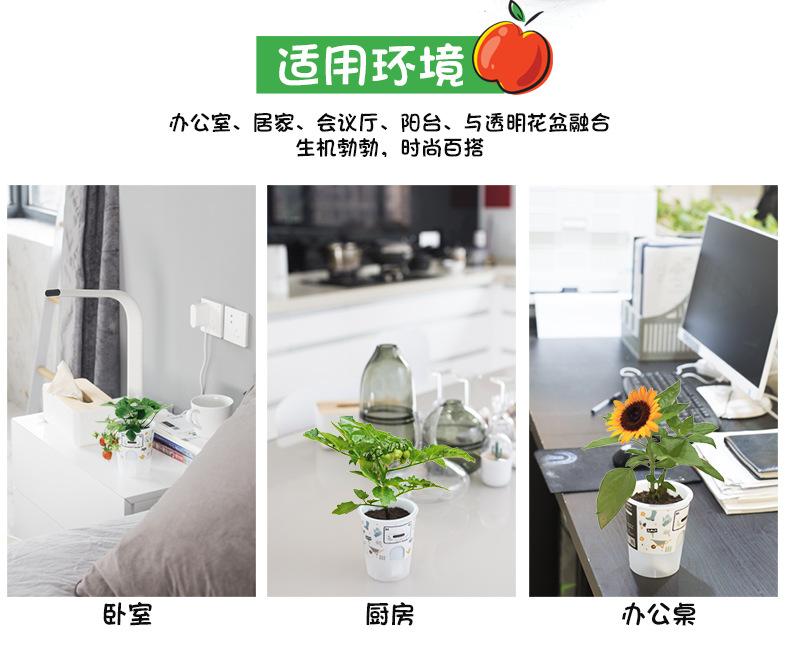 樂樂蔬菜詳情790-2_07.jpg