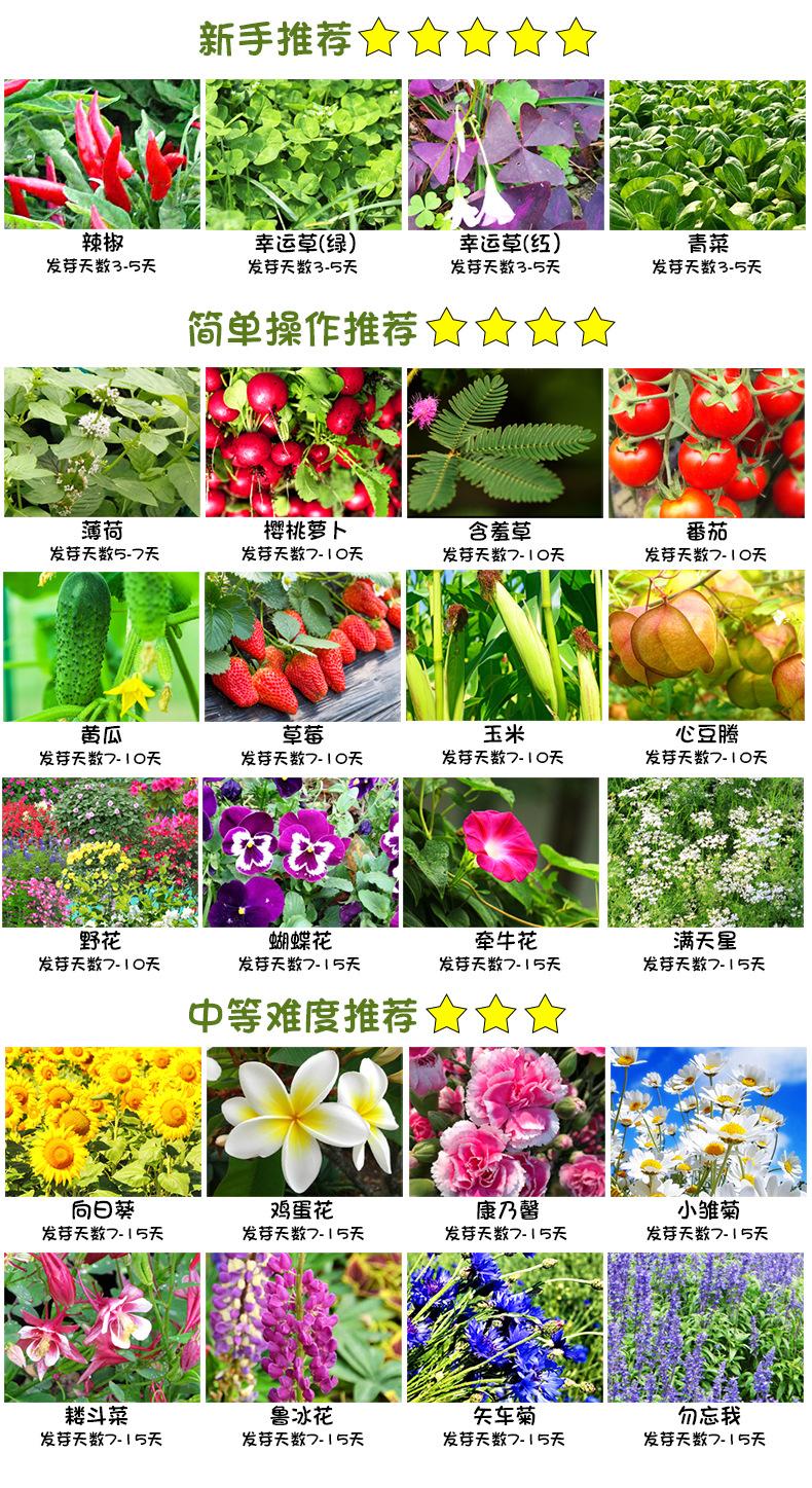 樂樂蔬菜詳情790-2_12.jpg