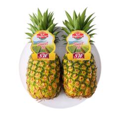 【京东伙伴计划—仅限积分兑换】菲律宾进口菠萝 2个装 单果重900g~1100g