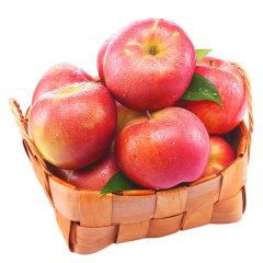 【京东伙伴计划—仅限积分兑换】山东栖霞苹果 精品12颗装红富士 单果重190g-240g