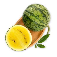 【京东伙伴计划—仅限积分兑换】国产特小凤西瓜 1粒装 单果1.5kg以上