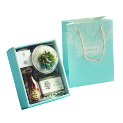 森系多肉植物禮盒 綠植手工皂玫瑰花茶焦糖餅干組合套裝 答謝禮盒 高端個性定制禮盒