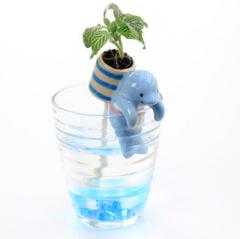 小动物极地杯客小植栽迷你植物 员工福利 儿童节小学生礼物