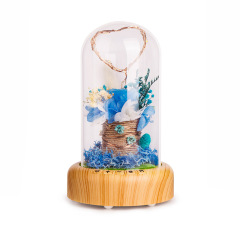 許愿流光瓶藍牙音箱夜燈 帶微景觀裝飾氛圍燈 創意家居用品