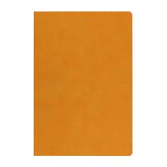 复古羊巴皮加厚笔记本 简约商务记事本 展会送什么礼品