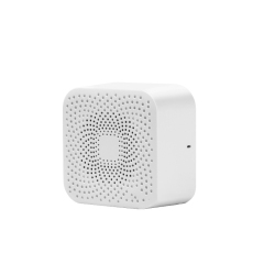 TWS迷你蓝牙无线音箱 便携户外电子小音响 小礼品有哪些