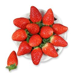 【京东伙伴计划—仅限积分兑换】山东章姬奶油草莓 约重250g/12-15颗