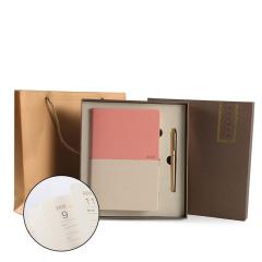 双色撞色2020年笔记本两件套装 工作安排计划表日程本手账本 笔记本套装礼品