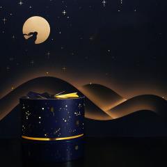 【斗转星移】2021年中秋节月饼礼盒 6饼6味咸甜口味组合搭配趣味月饼礼盒套装 中秋送什么礼品好
