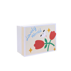 【现货空礼盒】可爱清新精致礼盒 入职礼盒
