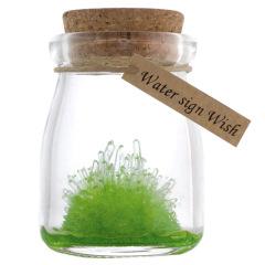 许愿精灵儿童礼品水晶DIY种植许愿瓶漂流瓶 学生创意小礼品